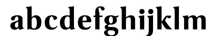 VenturisSansADF-Bold Font LOWERCASE
