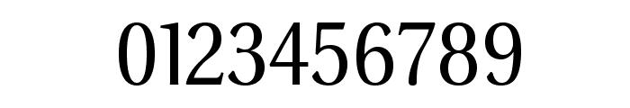 VenturisSansADF-Regular Font OTHER CHARS