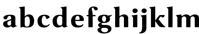VenturisSansADFEx-Bold Font LOWERCASE