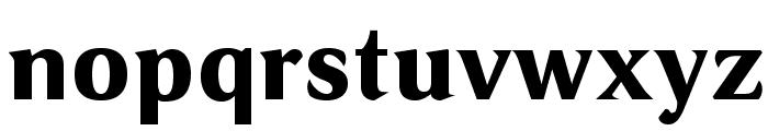 VenturisSansADFHeavy Font LOWERCASE