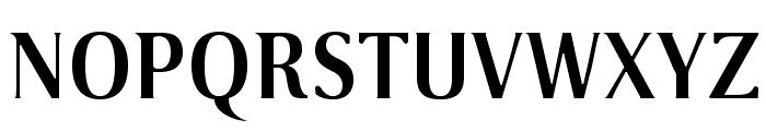 VenturisSansADFLt-Bold Font UPPERCASE