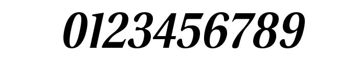 VenturisSansADFLt-BoldItalic Font OTHER CHARS