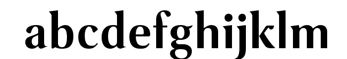 VenturisSansADFLt-Bold Font LOWERCASE
