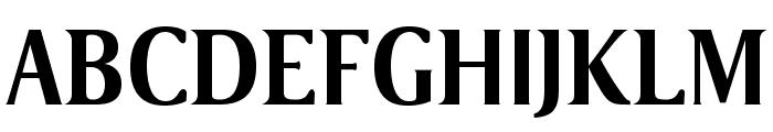 VenturisSansADFNo2-Bold Font UPPERCASE