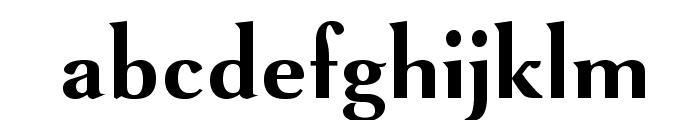 VenturisSansADFNo2-Bold Font LOWERCASE