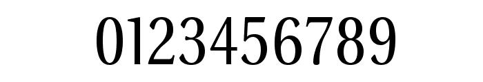 VenturisSansADFNo2-Regular Font OTHER CHARS