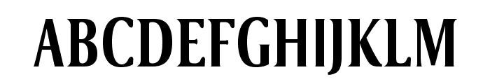 VenturisSansADFNo2Cd-Bold Font UPPERCASE