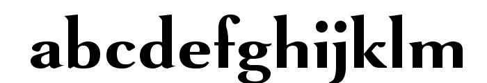 VenturisSansADFNo2Ex-Bold Font LOWERCASE