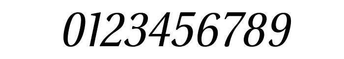 VenturisSansADFNo2Ex-Italic Font OTHER CHARS