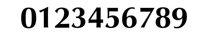 Vera Humana 95 Bold Font OTHER CHARS
