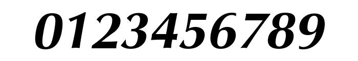 Vera Humana 95 BoldItalic Font OTHER CHARS