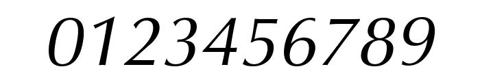 Vera Humana 95 Italic Font OTHER CHARS