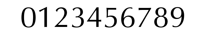 Vera Humana 95 Font OTHER CHARS