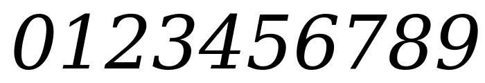 Verajja Serif Italic Font OTHER CHARS