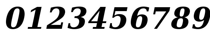 Verana-BoldItalic Font OTHER CHARS