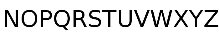 VeranaSans-Regular Font UPPERCASE
