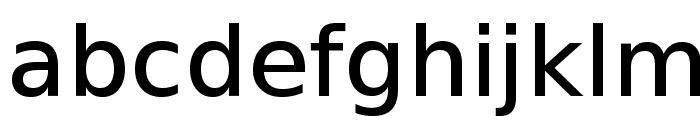 VeranaSansMedium-Regular Font LOWERCASE