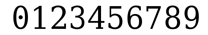 Verily Serif Mono Font OTHER CHARS