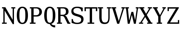 Verily Serif Mono Font UPPERCASE