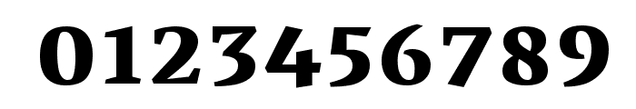 Vesper Devanagari Libre Heavy Font OTHER CHARS