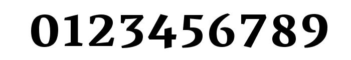 Vesper Libre Bold Font OTHER CHARS