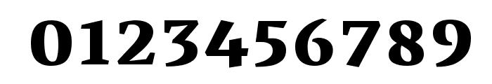 Vesper Libre Heavy Font OTHER CHARS