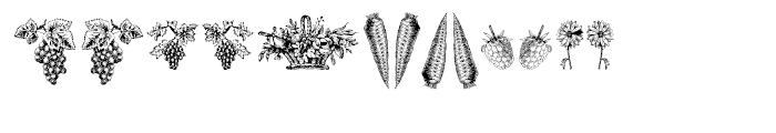 Vegetable Breathe Regular Font UPPERCASE