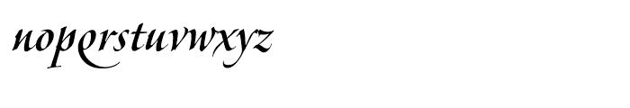 Veljovic Script Cyrillic Medium Font LOWERCASE