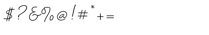 Velvet Script Regular Font OTHER CHARS