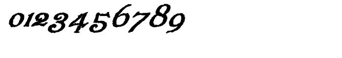 Veneribe Oblique Regular Font OTHER CHARS