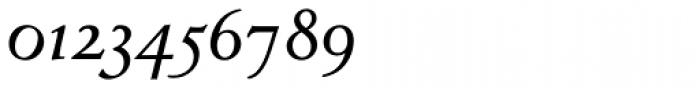 Venetian 301 Bold Italic Font OTHER CHARS
