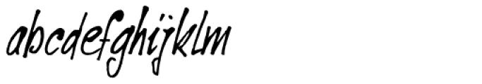 Ventana Italic Font LOWERCASE