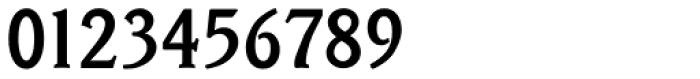 Veracruz Serial Medium Font OTHER CHARS