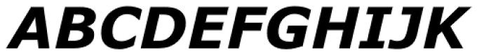 Verdana Bold Italic Font UPPERCASE