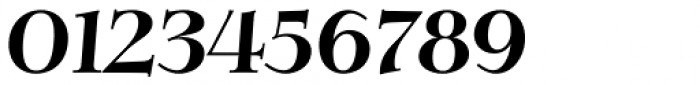 Verger Bold Italic Font OTHER CHARS