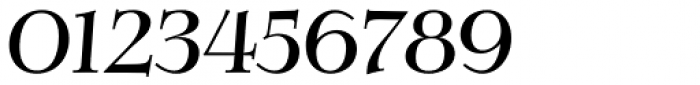 Verger Italic Font OTHER CHARS