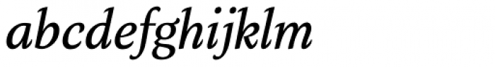 Verse Serif Medium Italic Font LOWERCASE