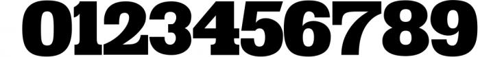 VIDIZ PRO Typeface 10 Font OTHER CHARS