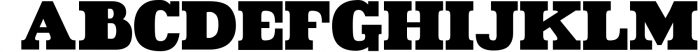 VIDIZ PRO Typeface 1 Font UPPERCASE