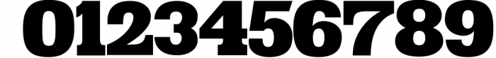 VIDIZ PRO Typeface 2 Font OTHER CHARS