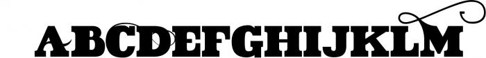 VIDIZ PRO Typeface 9 Font UPPERCASE
