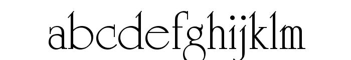 VI Duong Vi Font LOWERCASE