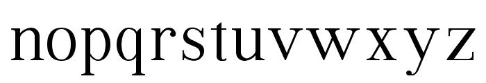 VIP Roman Regular Font LOWERCASE
