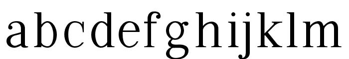 VIPRoman-Regular Font LOWERCASE