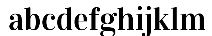 Vidaloka Font LOWERCASE