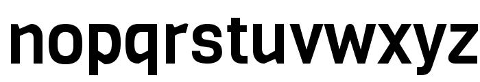 Viga-Regular Font LOWERCASE