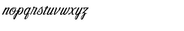 Victory Script Regular Font LOWERCASE