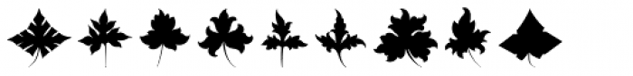 Victorian Leaf Ornaments Font OTHER CHARS