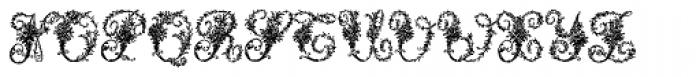Victorian Ornamentals Font UPPERCASE