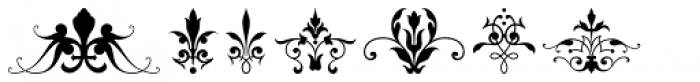Victorian Ornaments Font OTHER CHARS